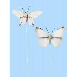 Vlinders V, Btl. a 2 St.
