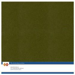 Linen Cardstock - SC - Pine...